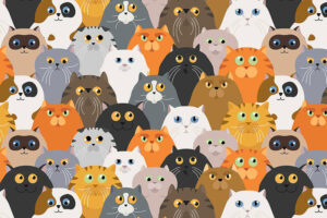 What Is the Best Cat Breed for Your Zodiac Sign